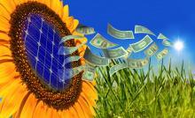 solar power sunflower graphic